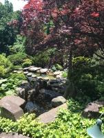 FCL Hillwood Gardens 7